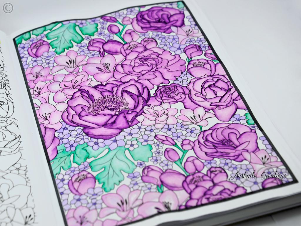 coloring-3_DSC4650