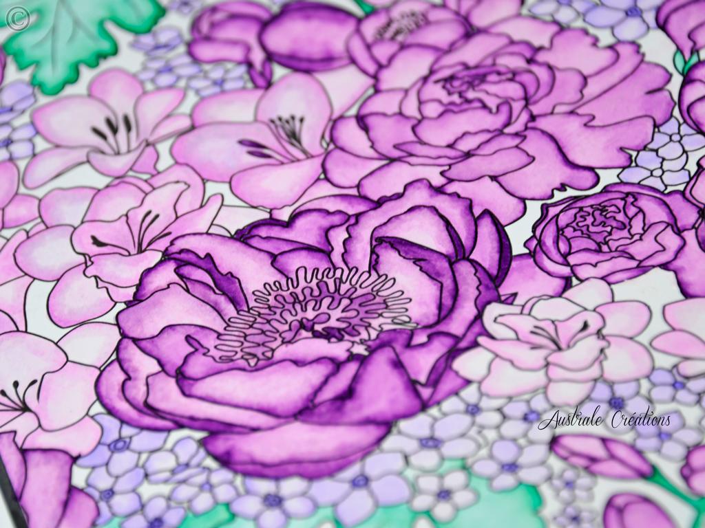 coloring-3_DSC4651