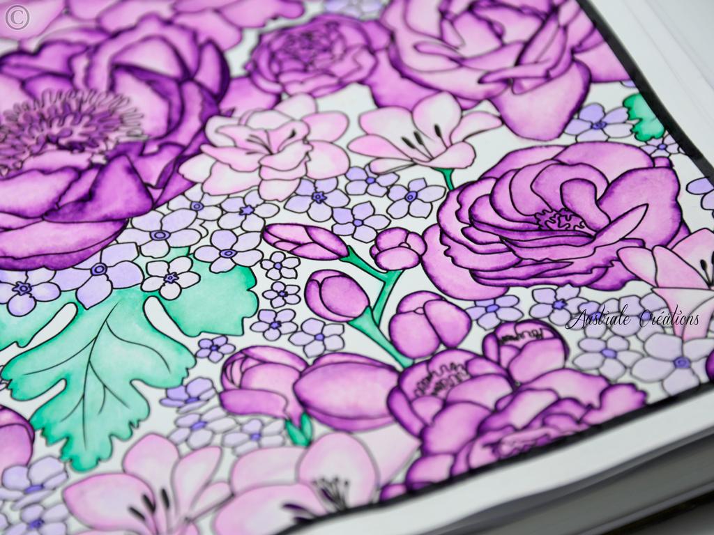 coloring-3_DSC4653
