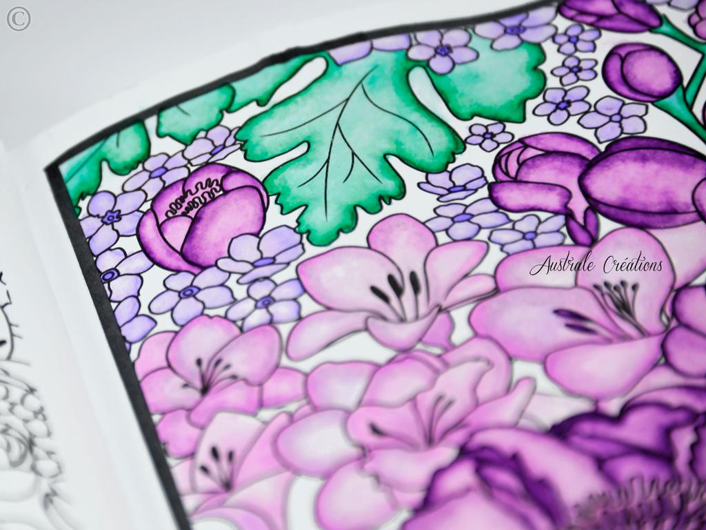 coloring-3_DSC4654