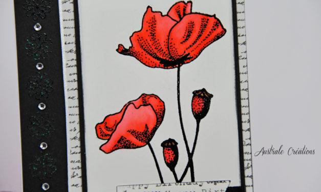 Carte : Poppyversaire