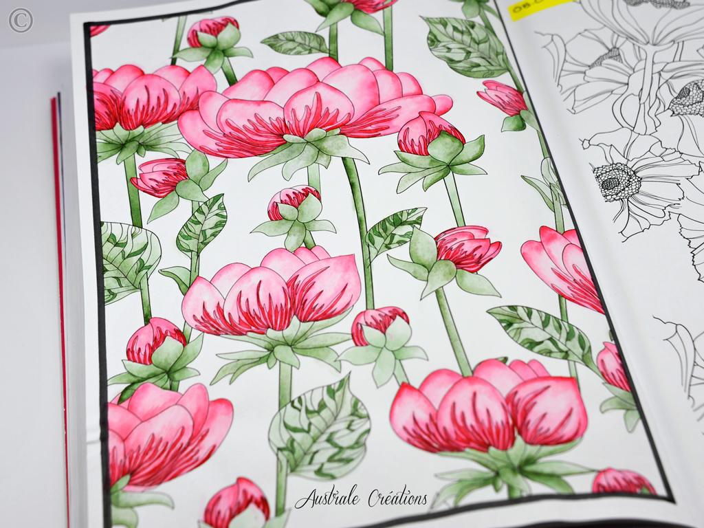 Coloring n° 5