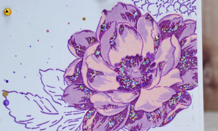 Carte : Deep Iris