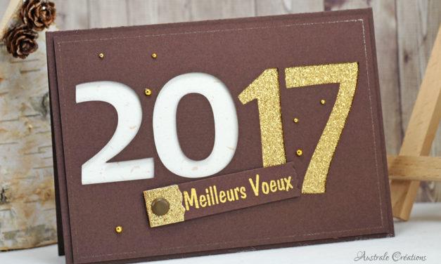 Voeux 2017 #5 : Carte