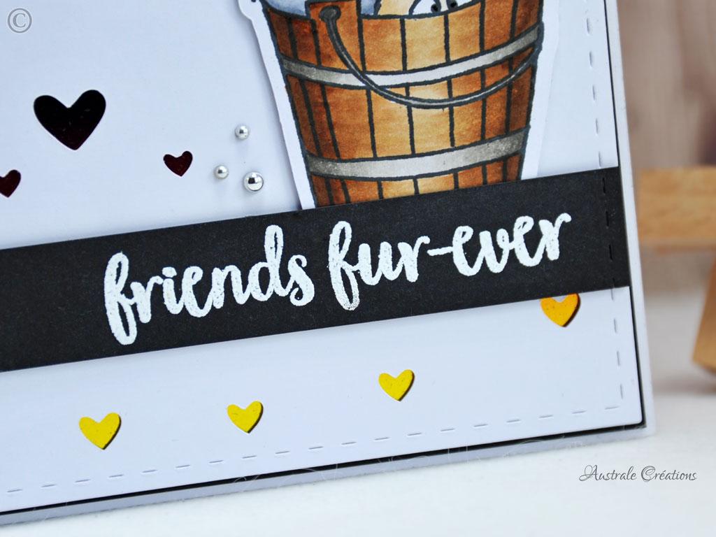 Carte Friends fur Ever