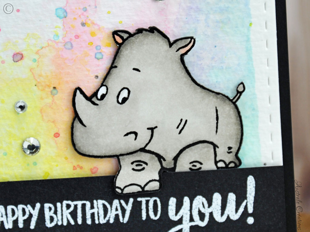 Carte-Rhino Birthday