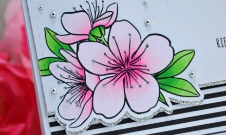 Carte : Sakura