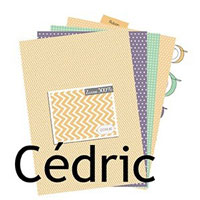 Collection Cédric de Com16