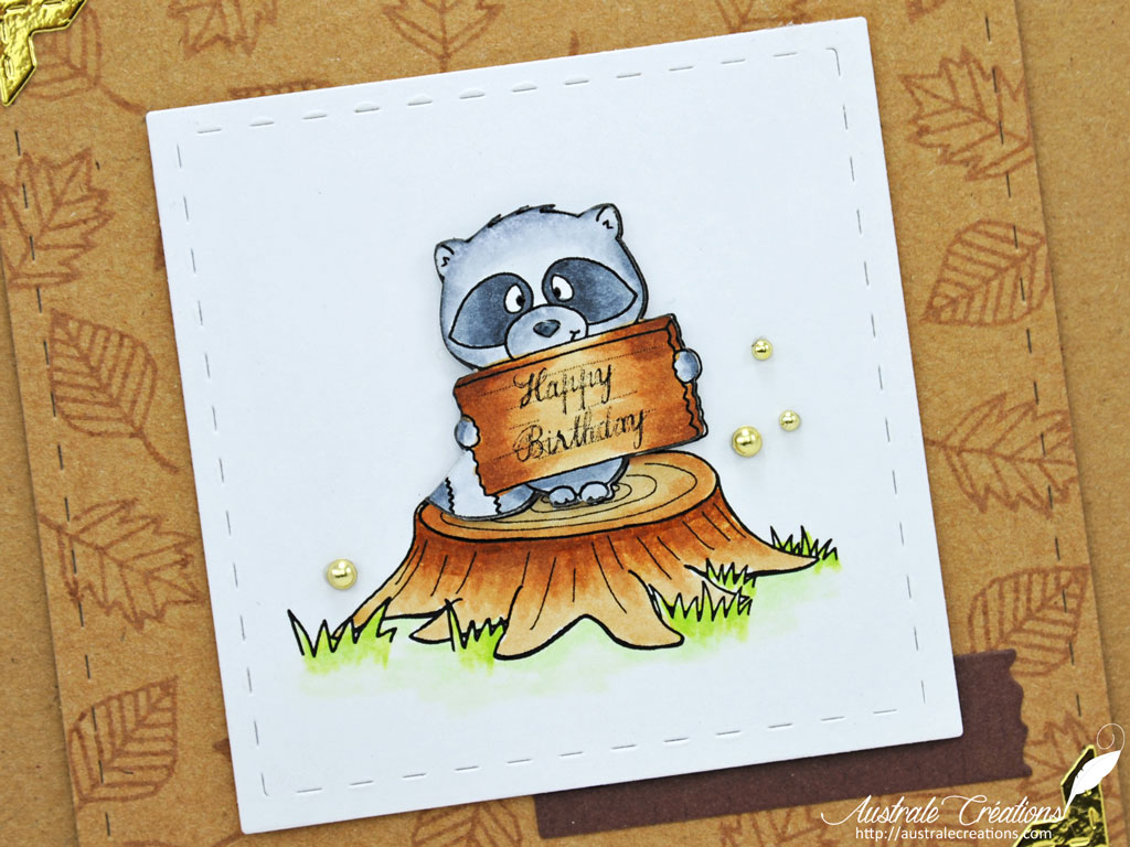 Carte Raccoon Birthday