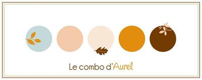CS Combo Aurel 2017-11