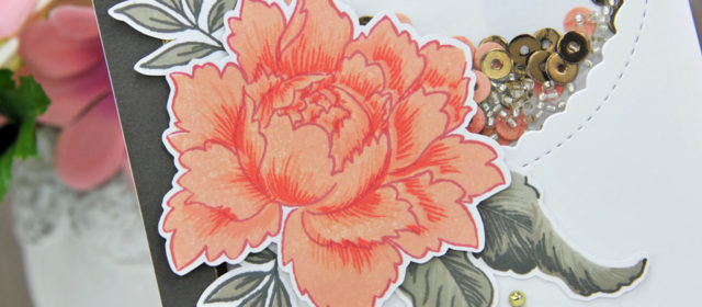 Carte : Poeny Bouquet