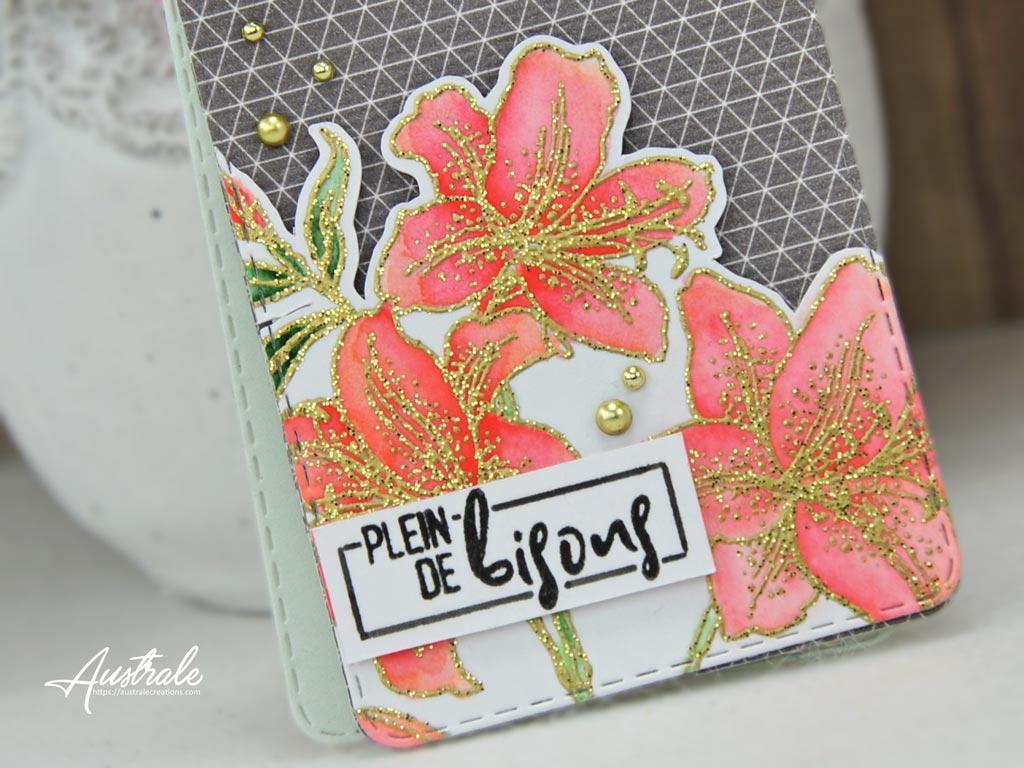 Com16 Duo Star Lilies