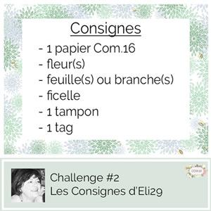 Challenge #2 Consignes Eli