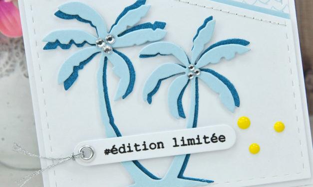 Com16 : Duo Edition Limitée