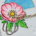 Carte Une composition florale