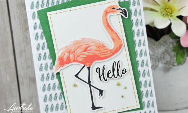 Com16 : Collection June – Hello Flamingo