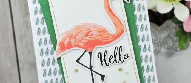 Com16 : Collection June – Hello Flamingo