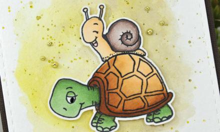 Gerda Steiner Designs : Turtley Awesome !