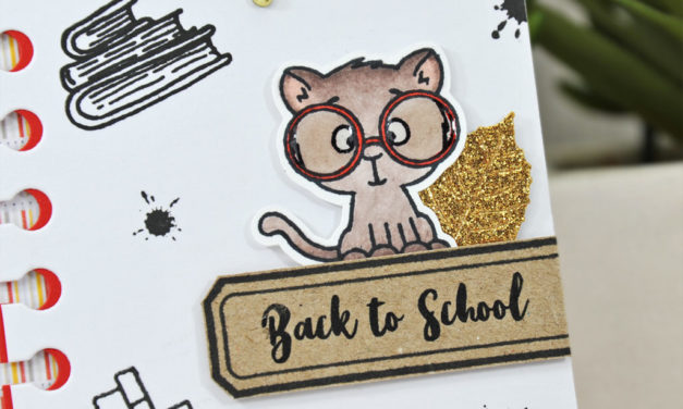 Gerda Steiner Designs : Back to School !