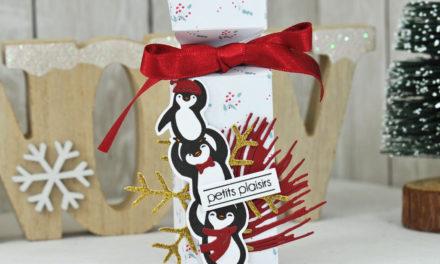 Tutoriel : Boite Cracker de Noël