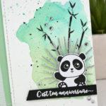 Com16 : Bébé Panda