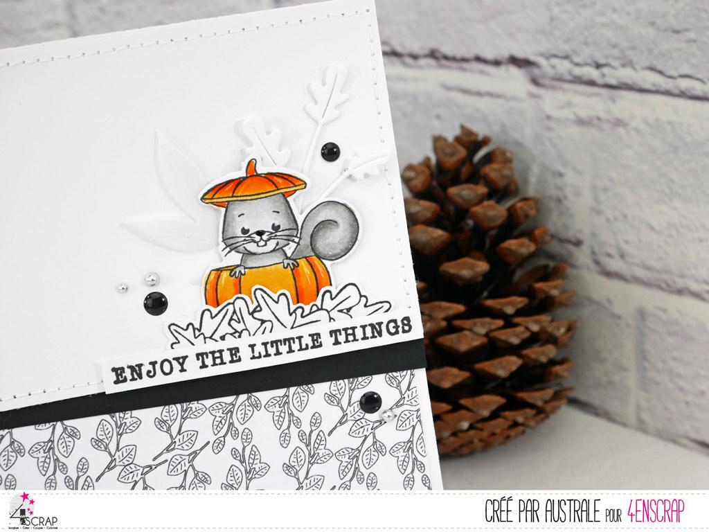 Carte d'autome avec fond en noir et blanc, un adorable petit écureuil dans sa citrouille, feuillages et pastilles d'embellissements/.