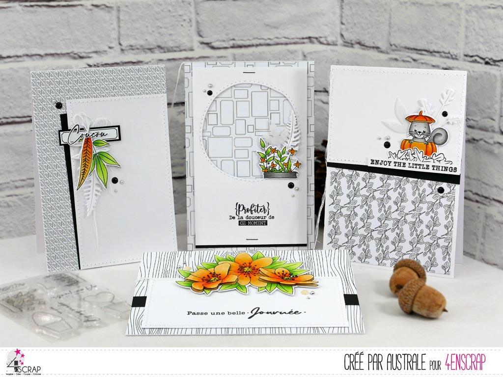 Cartes pour toutes les occasions avec fonds noirs et blanc, feuillages, balconnière de fleurs, écureuil et bouquet d'anémones en orange et vert.