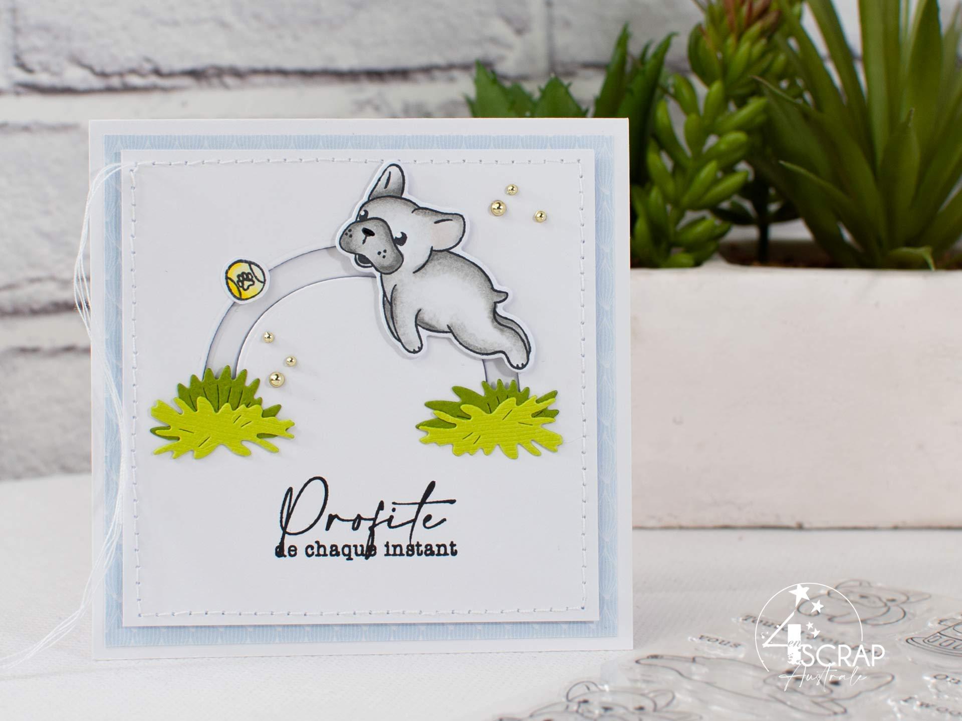 Carte slider avec un adorable bouledogue qui saute pour attraper sa balle.