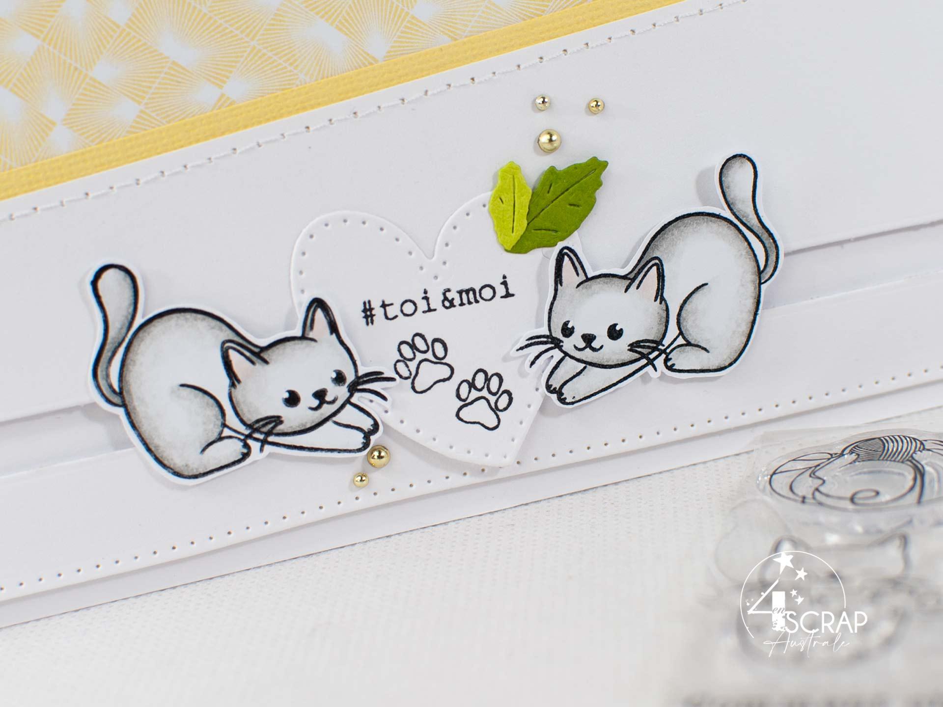 Carte longue slider avec d'adorables petits chats sur fond jaune.