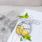 4enscrap : Inspiration Sketch d'Australe